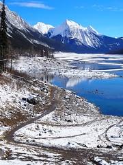 Jasper, Rocky Mountains, Canada (Creativelena) Tags: rockymountains canada travel traveller roadtrip alberta britishcolumbia mountains jasper nationalpark moose medicinelake jasperfoodtours gondola