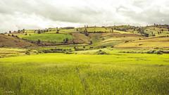 Landscape in Burma (Laszlo Horvath.) Tags: myanmar burma landscape green nikon nikond7100 sigma1835mmf18art tour