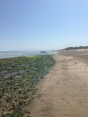 Wet and gritty (hannaschmitz) Tags: capecod ma massachusetts sandwichma beach shore water sand sky nature