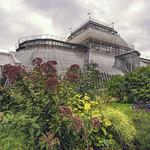 Peter the Great Botanical Garden. thumbnail