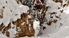 Looking Down The Mountain To The Valley Below (Susan Roehl) Tags: yellowstoneinwinter2017 yellowstonenationalpark wyomingusa viewfromtrail snow ravine sueroehl naturalexposures photographictours lumixdmcgx8 35x100mmlens handheld