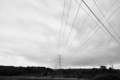 ferry_to_kerry_L2014205 (nocklebeast) Tags: nrd ferry kerry ireland powerlines