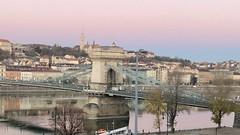 Chain Bridge (RobW_) Tags: early morning view chain bridge sofitel budapest hungary amaviola danube 16nov2018 november 2018