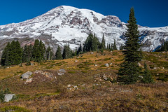 Mount Rainier National Park (jeff's pixels) Tags: mountrainiernationalpark mountrainier hiking pnw outdoors nature landscape nikon d850 bird bus explore train