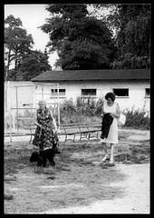 Archiv S62 Hund ausführen, Klansdorf, 4. September 1977 (Hans-Michael Tappen) Tags: archivhansmichaeltappen tier hund pudel hundeleine frauen handtasche sitzbank 1970s 1970er
