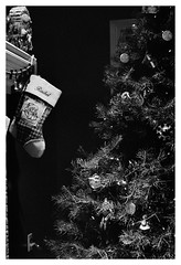 christmas contrast (Joe Jesus) Tags: film filmphotography nikon f2 tmax tmax400 35mm nikonf2 december 2018 hc110 homedeveloping indiana