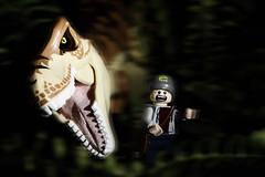 LEGO T-Rex Vs Me (40gOingOn4!) Tags: lego t rex trex jurassic park me rob robert trevissmith minifigure minifigures toy toys chase teeth uk nikon d7100 105mm