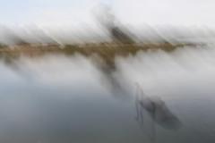 ICM 2019 1 #19 (haywoodtaylor) Tags: beach minimalist icm blur sea coast intentionalcameramovement sky mist water ocean lakeside grass tree