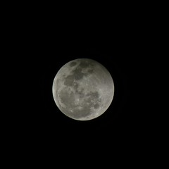 Back to a Full Moon (macprohawaii) Tags: moon lunareclipse eclipse hawaii honolulu fujifilmfinepixhs10