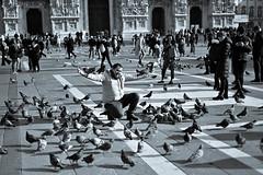 Milano (lorenzog.) Tags: milano piazzaduomo people 50mm italy blackandwhite nikon d700 milan pidgeon birds