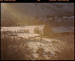 eastern sierra on medium format film (Garrett Meyers) Tags: pentax67 mediumformat 120 garrettmeyers film filmphotographer barn snow cold winter easternsierra portra400 portra kodak kodakfilm kodakportra400 golden country colorfilm