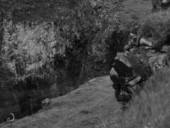Entée du canyon de la rivière Ölfusa au pied de Gullfoss/Ölfusà river canyon entrance below Gullfoss (bd168) Tags: rockface façaderocheuse lave lava canyon monochrome islande iceland gullfoss rivièreölfusariver em10markii m14150mmf4056iied