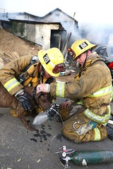 Dog Saved From Echo Park Fire (LAFD) Tags: lafd losangelesfiredepartment harrygarvin echopark