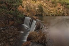 Arroyo de la Angostura. (Amparo Hervella) Tags: rascafría comunidaddemadrid españa spain agua cascada naturaleza árbol largaexposición paisaje d7000 nikon nikond7000 anochecer