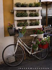 Trastevere Rome Italy 2018 (John Hoadley) Tags: trastevere rome italy 2018 september canon 7dmarkii 24105 f5 iso400 bicycle flowers