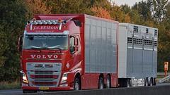 NL - J.A. de Haan Volvo FH GL04 (BonsaiTruck) Tags: haan volvo livestock tiertransporte viehtransporter lkw lastwagen lastzug truck trucks lorry lorries camion caminhoes