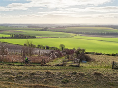 A view from Old Winchester Hill (martin_swatton) Tags: old winchester hill meonvalley hampshire england uk countryside walk cold tranquil quiet peacefull olympus omd em1 mkii mzuiko 1240 28 pro cpl polariser olympus1240mmf28
