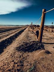 Passatje de Les Dunes (Raúl Gallego Huete) Tags: olympusomdem10markiii zuiko1442ez landscape landscapephotography arena playa beach sky cielo madera wood