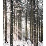 Snow Rays thumbnail