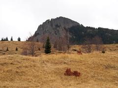 a Kakastaréj novemberben / Creasta Cocoşului in november (debreczeniemoke) Tags: ősz autumn túra hiking hegy mountain gutin erdély transilvania transylvania táj land tájkép landscape kakastaréj creastacocoşului csúcs peak olympusem5