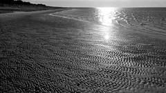 Water waves and ripples (greenoid) Tags: bw sw sea ocean northsea nordsee strand beach sand ripples wellen riefen rillen sonne römö dänemark denmark