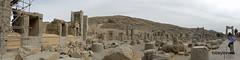005 Hundred Column Hall (Sedsetoon), Persepolis  (1).JPG (tobeytravels) Tags: artaxerxes xerxes ahurmazda alexanderthegreat