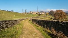 Arnfield Lane (Maria-H) Tags: lane farm arnfield derbyshire highpeak peakdistrict uk olympus omdem1markii panasonic 1235