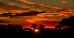 Lever de Soleil (GerardMarsol) Tags: france var hyèreslespalmiers sudest sud soleil rouge levant
