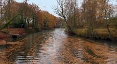 Autumn impression (roland_tempels) Tags: supershot haasdonk belgium fotress