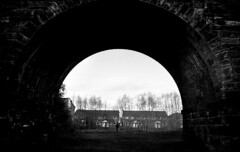370 (Digirolamo Nicola) Tags: northwich england cheshire uk filmisnotdead november bridge underthebridge walk