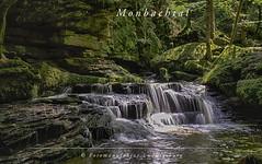 Monbachtal - Schwarzwald (Fotomanufaktur.lb) Tags: badliebenzell badenwürttemberg deutschland de schölkopf schoelkopf canon schwarzwald blackforrest