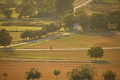 _MG_3335a - 28.08.2019 (hippo1107) Tags: konz oberemmel konzertälchen sonnenuntergang sunset sommer august 2018 abendrot abendstunde radfahren wandern ausruhen entspannen aussicht weinberge wiesen felder grün landschaft landschaftsfotografie marienkapelle kapelle chapbel canoneos70d canon eos 70d bank bench wanderweg ruhe stille