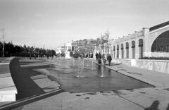 190104_Parc_Central_020 (Stefano Sbaccanti) Tags: bw blackandwhite bn parccentral valencia minox35gl kentmere400 bellinihydrofen analogicait analogue analogico argentique spain spagna selfdeveloped 2019 city
