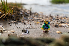 Walking on the sand (Ballou34) Tags: 2018 7dmark2 7dmarkii 7d2 7dii afol ballou34 canon canon7dmarkii canon7dii eos eos7dmarkii eos7d2 eos7dii flickr lego legographer legography minifigures photography stuckinplastic toy toyphotography toys rømø danemarkdusud danemark dk stuck in plastic sand beach walk shell water sea