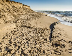 Going . . . Going . . . Gone! (Dr. Farnsworth) Tags: lakemichigan sand dune ship wood remains wreck thecontest whitehall mi michigan winter january2019