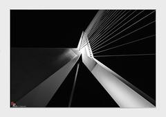 pont Erasme (dany.schoulz) Tags: environnementurbain architecture moderne noirblanc fineart rotterdam erasmusbridge
