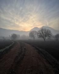 Foggy sunrise (VillaRhapsody) Tags: foggy sunrise misty mysterious rural field kayaköy fethiye autumn trees challengeyouwinner