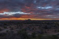 _RJS3543 (rjsnyc2) Tags: 2019 africa d850 himba landscape namibia night nikon outdoors photography remoteyear richardsilver richardsilverphoto safari sunset travel travelphotographer animal camping nature sky stars tent wildlife