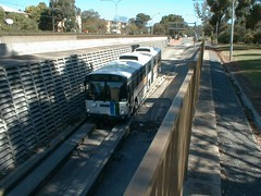 Adelaide O-Bahn Busway - November 1999 (RS 1990) Tags: naomitsutomitani adelaide obahn busway australia southaustralia november 1999