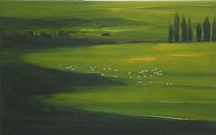 Sinfonia di verdi (Renoil L.) Tags: prati verdi paesaggio renoilpainting colori sinfoniadicolori