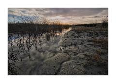 Waterdonken B3 Breda 04 (cees van gastel) Tags: ceesvangastel canoneos550d clouds sigma1020mm landscape landschap luchten natuur nature nederland netherlands noordbrabant breda water winter waterdonkenbreda waterakkers wolken horizon einder