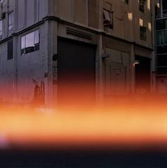(whatsfonzielike) Tags: medium format mediumformat bronicasqa kodakportra400 120film kodak120 seattle kodakfilm dog donwtown wa matt matches film analog reflections sunsets shadows brothers university district mattmatches