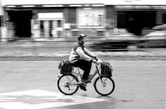 Cyclist in Barrier, Black and White (naoryvi17) Tags: ciclista barrido efecto camara valdivia chile movimiento barrier effect move camera photography black white blanco y negro