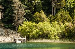 Colonia Suiza - Bariloche (NatyCeballos) Tags: bariloche coloniasuiza muelle lago pinos arboleda arbol agua nikond7000 airelibre naturaleza nature pier embarcadero jetty