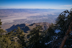 Palm Springs from San Jacinto Mountains (romanboed) Tags: leica m 240 usa america winter christmas palm springs california landscape san jacinto mountains tramway summicron28