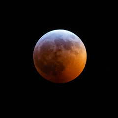2019 Lunar Eclipse (arlene sopranzetti) Tags: eclipse 2019 total nj