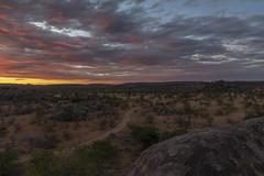 _RJS3544 (rjsnyc2) Tags: 2019 africa d850 himba landscape namibia night nikon outdoors photography remoteyear richardsilver richardsilverphoto safari sunset travel travelphotographer animal camping nature sky stars tent wildlife