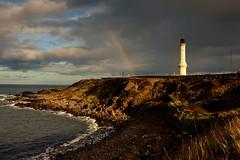 Rain clouds over Girdle Ness lighthouse (iancowe) Tags: girdle ness girdleness lighthouse aberdeen rainbow rain clouds sunset scotland scottish nigg harbour torry stevenson northernlighthouseboard nlb