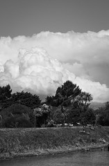 20181118_7842_7D2-70 Clouds over the Peninsula #2 (322/365) (johnstewartnz) Tags: cloud clouds 7dmarkii 7d2 7d canon7dmarkii canoneos7dmkii canoneos7dmarkii 2470 2470mm ef2470mmf4l canonef2470f40l canon canonapsc apsc eos 100canon avonriver avon riveravon bankspeninsula peninsula cb monochrome blackandwhite bw 322365 day322 onephotoaday oneaday onephotoaday2018 365project project365