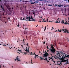 Bryce Canyon National Park - Sunset Point (Stabbur's Master) Tags: westernusa westernus west nationalpark usnationalpark brycecanyonnationalpark utah utahnationalpark sunsetpoint brycecanyonsunsetpoint